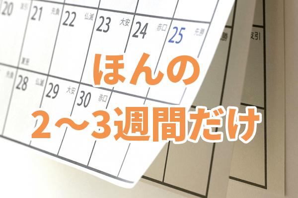 めくれたカレンダー