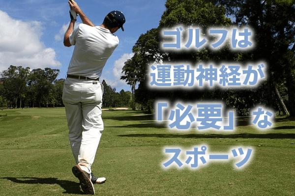 ゴルフは運動神経が「必要」なスポーツ